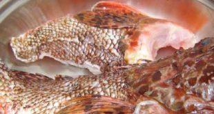 Suda Limonlu Balık Tarifi