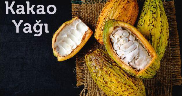Kakao Yağının Faydaları