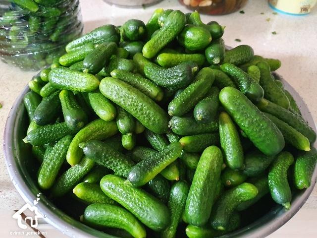 en-guzel-salatalik-tursusu-tarifi