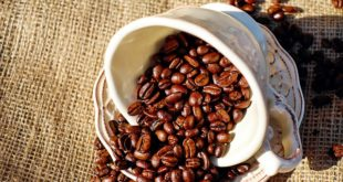 kahvenin-faydalari-nelerdir