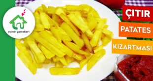 MC Donalds Çıtır Patates Kızartması