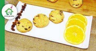 uzumlu-portakalli-dondurma-kurabiye