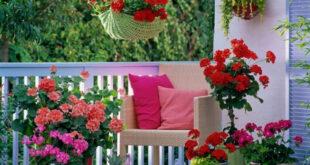 Balkonu bahçeye çeviren fikirler